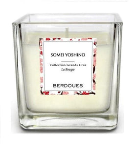 Candle Somei Yoshino