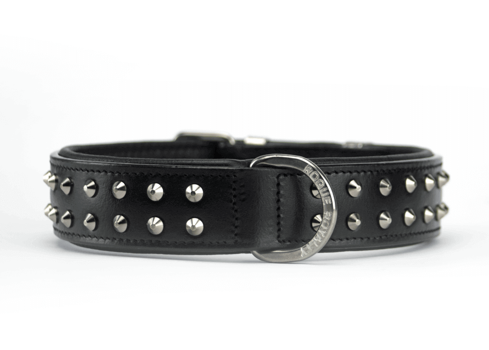 Buy Ruffneck Black & Steel Slim Fit Dog Collar Online