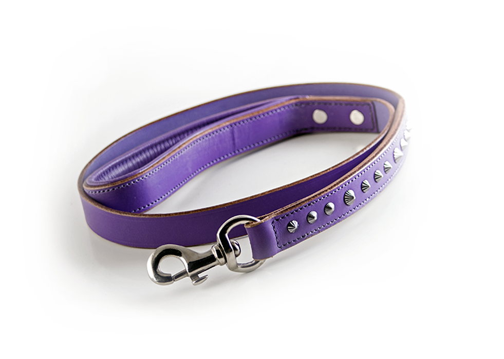 Buy Imperial Purple Dog Leash Online