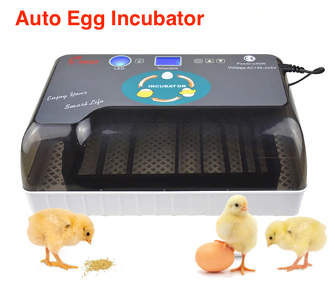 UrbanHatcher™ - Auto Eggs Incubator