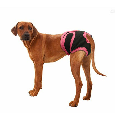 DOG DIAPER PANTS