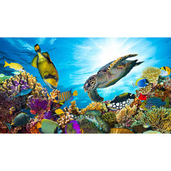 Coral Reef Science Kit - K and K Creative Toys