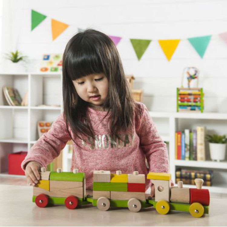 EverEarth Sorting Train Blocks Wooden 3