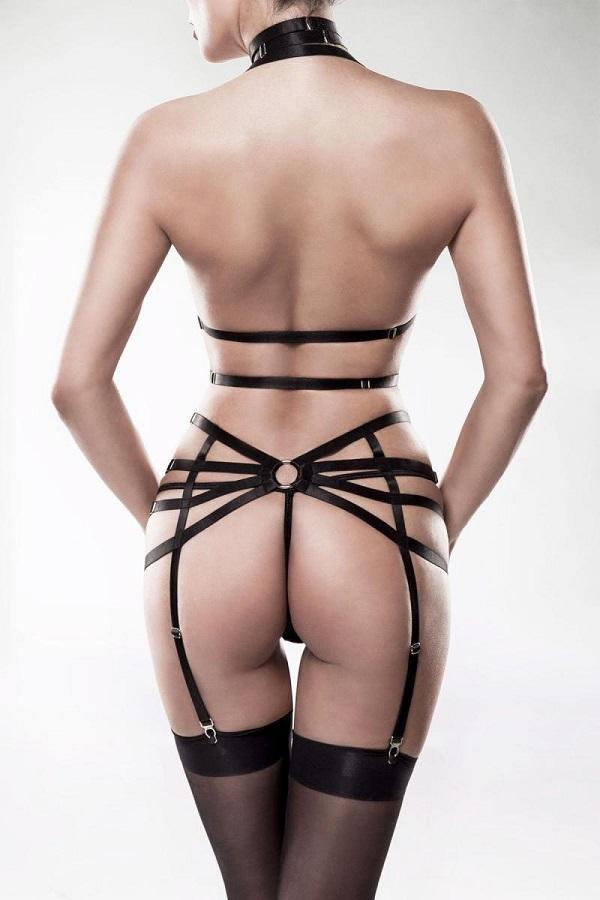 Three piece Harness Set