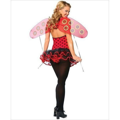 Lady bug fancy dress costume with wings for <span class=money>€24.95 EUR</span> at Flirtywomen