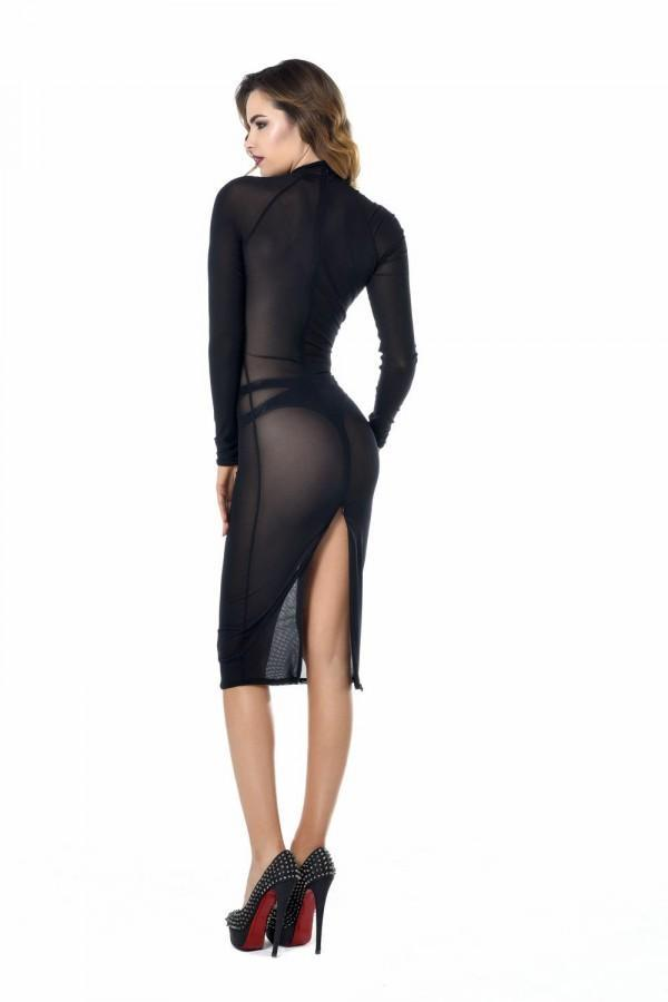 Long sleeved sheer dress