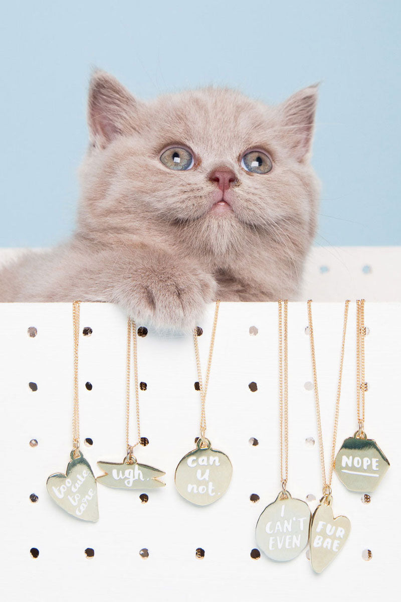 The Fur Bae Lookbook by Hello Harriet, full of photos of the most adorable British Shorthair cats wearing adorable gold and enamel collar tags