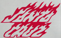 Santa Cruz Flames Sticker-Sticker Blimp Decals