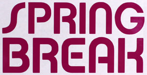Spring Break Skinny Sticker-Sticker Blimp Decals