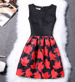 2Xl Spring Summer Plus Size Women Print Floral Vest Dress Sleeveless A Line-iuly.com