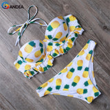 Bikinis Women Push Up Swimsuit Padded Bikini Set Swimwear Female Beachwear Bathing-iuly.com