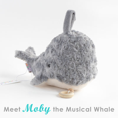 Meet Moby the Musical Plush Whale