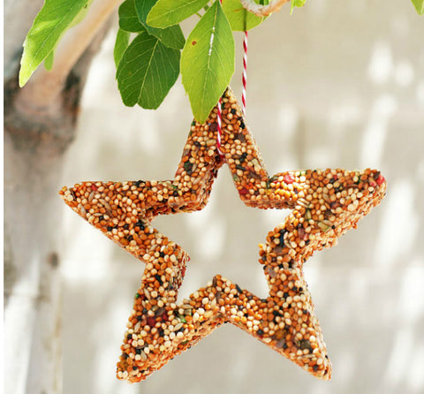 Bird feeder shaped as a star