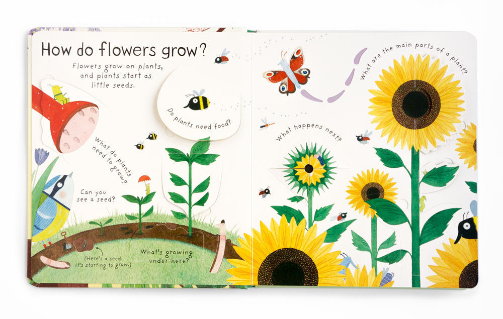 Interior of a book about how flowers grow