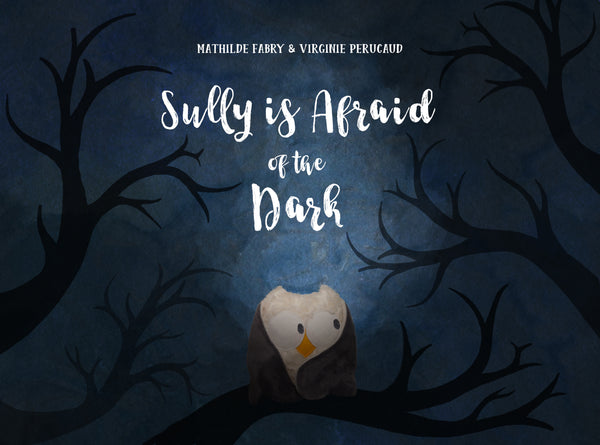 Book Sully is scared of the dark by Mathilde Fabry and Virginie Perucaud
