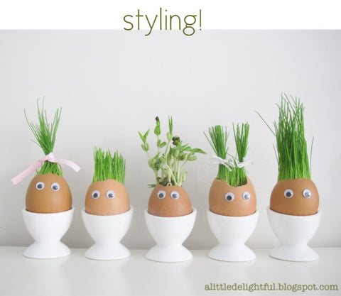 Egg with plant coming out of their head