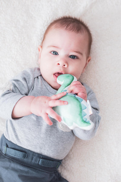 Leo - The Dinosaur Rattle