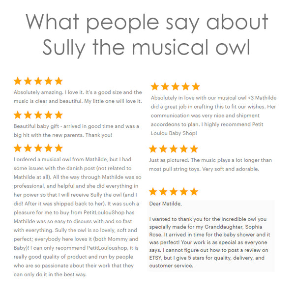 Baby mobile - Sully the musical owl