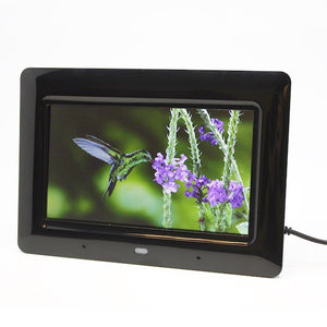 Zone Shield EZ Digital Picture Frame