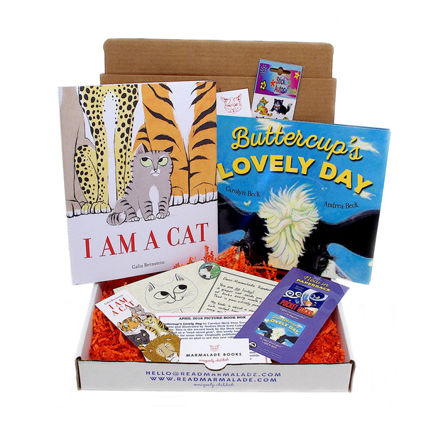April 2018 Picture Book Box - (Ages 4-7)
