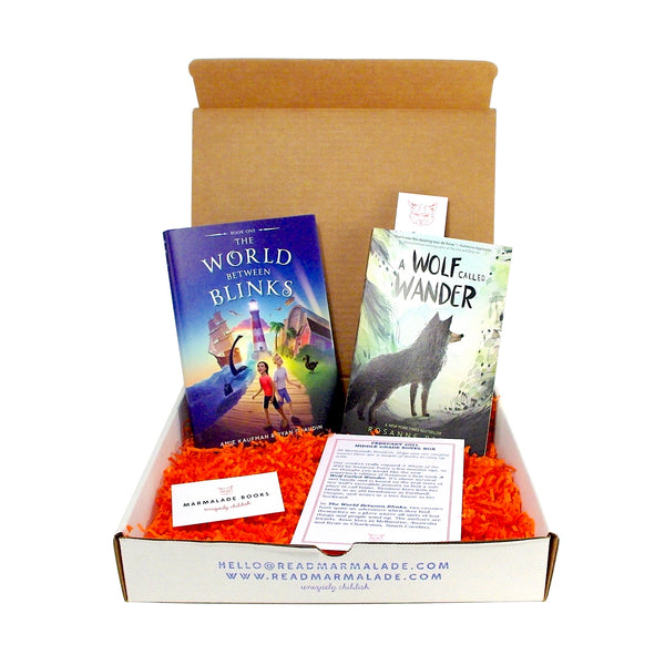 February 2021 Middle Grade Novel Box (Ages 8-12)