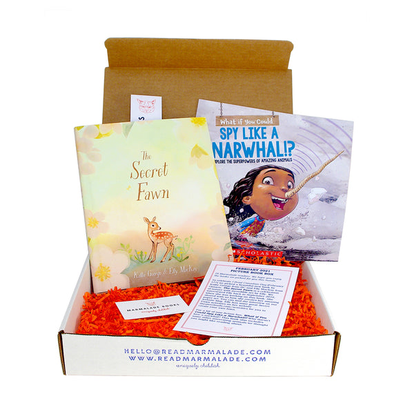 February 2021 Picture Book Box - (Ages 4-7)