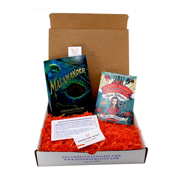January 2020 Middle Grade Novel Box (Ages 8-12)