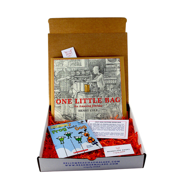 July 2020 Picture Book Box - (Ages 4-7)