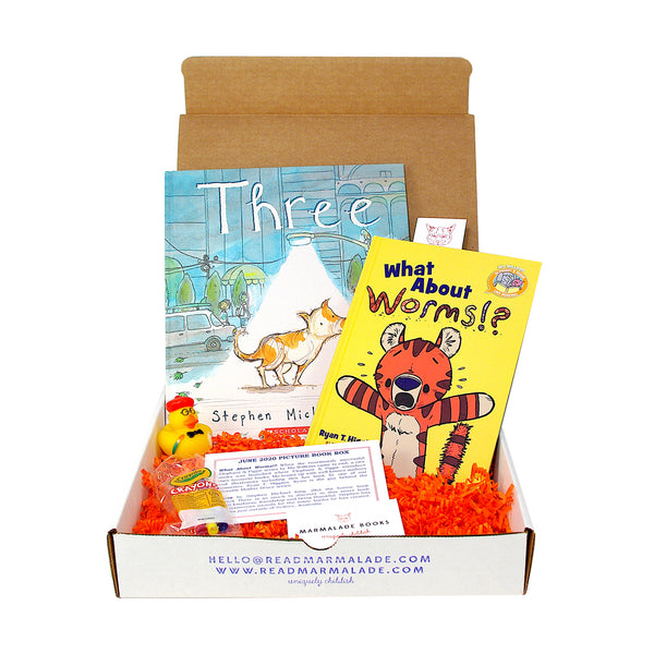 June 2020 Picture Book Box - (Ages 4-7)