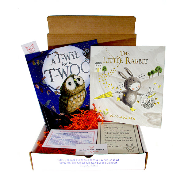 March 2019 Picture Book Box - (Ages 4-7)