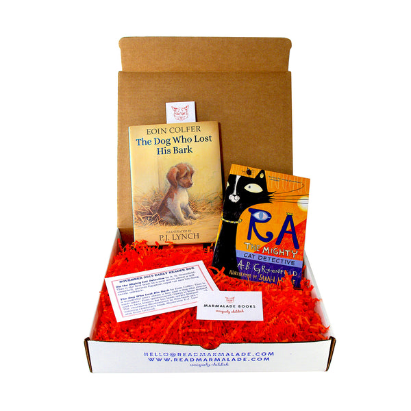 November 2019 Early Reader Box (Ages 6-9)