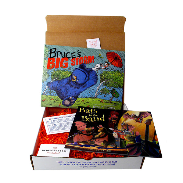 November 2019 Picture Book Box - (Ages 4-7)