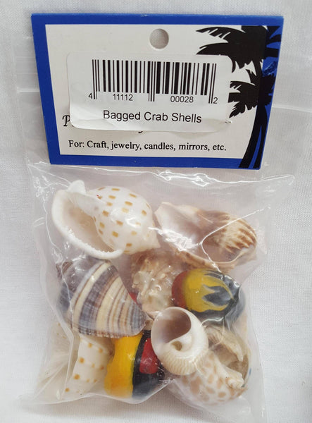 Assorted Hermit Crab Shells/Homes Gifts - Shell Port