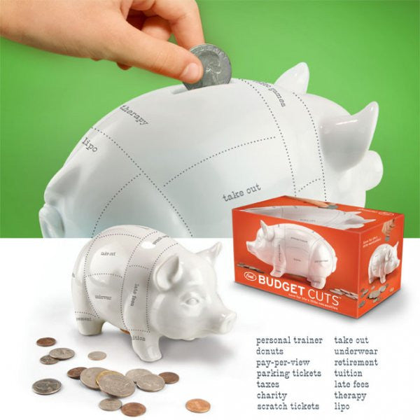 Budget Cuts Piggy Bank