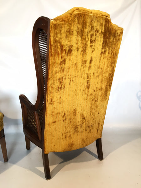 Lewittes Tufted Velvet Cane Wingback Chair rear view