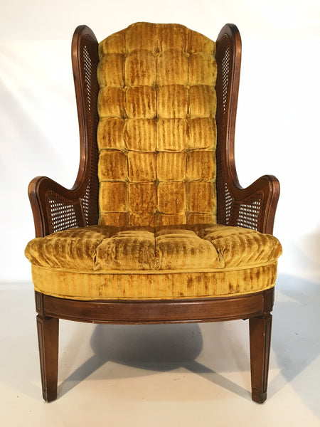 Lewittes Tufted Velvet Cane Wingback Chair front view