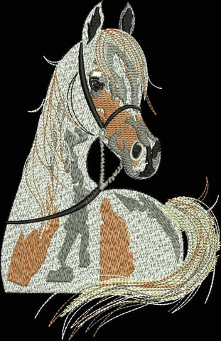 Arabian Horse Design Digital Download