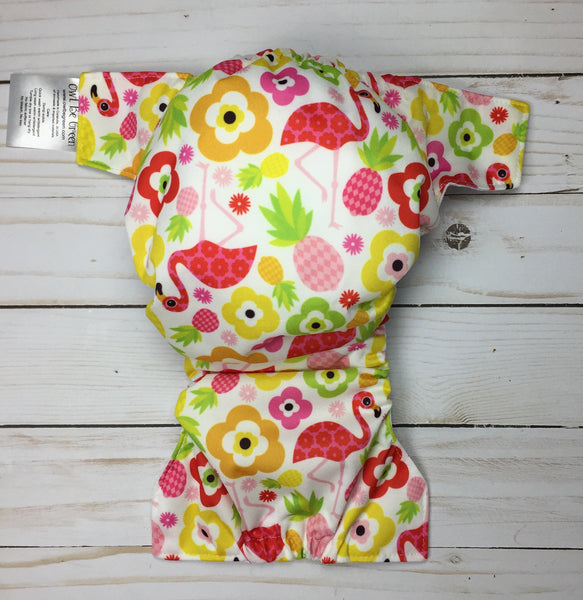 Small Swim Diaper 12-22lbs - Owl Be Green