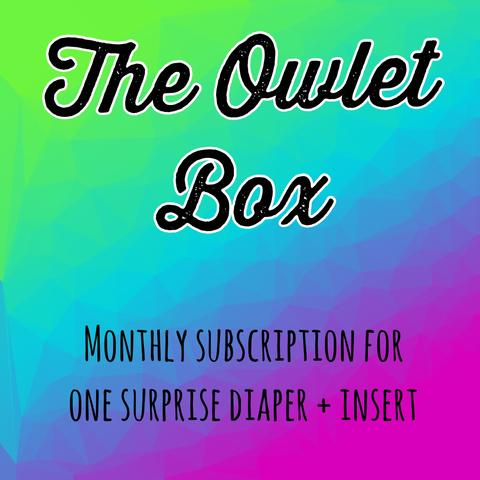 The Owlet Box Monthly Subscription Cloth Diaper - Owl Be Green