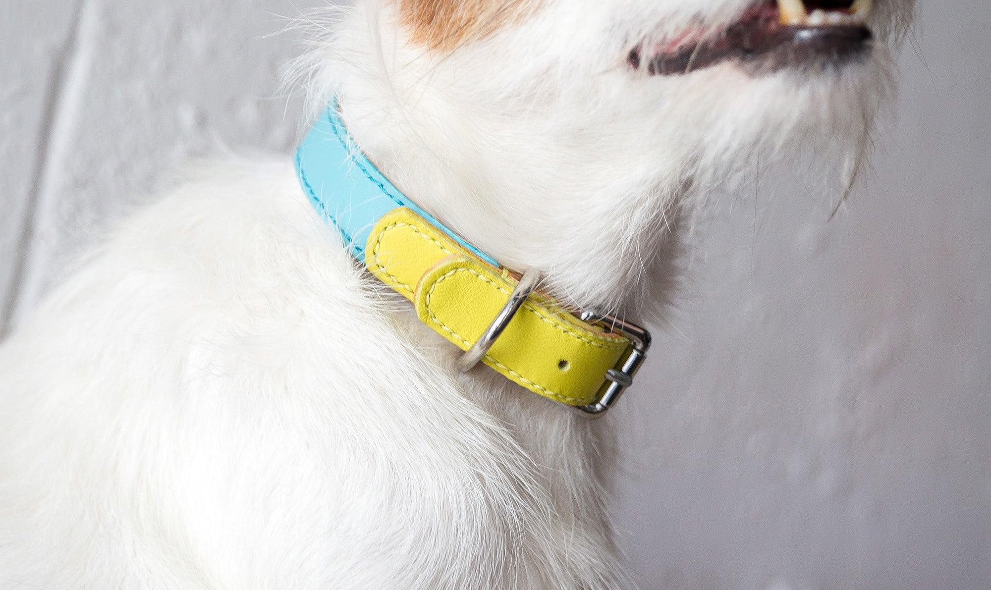 Ethan Color-blocking Leather Collar