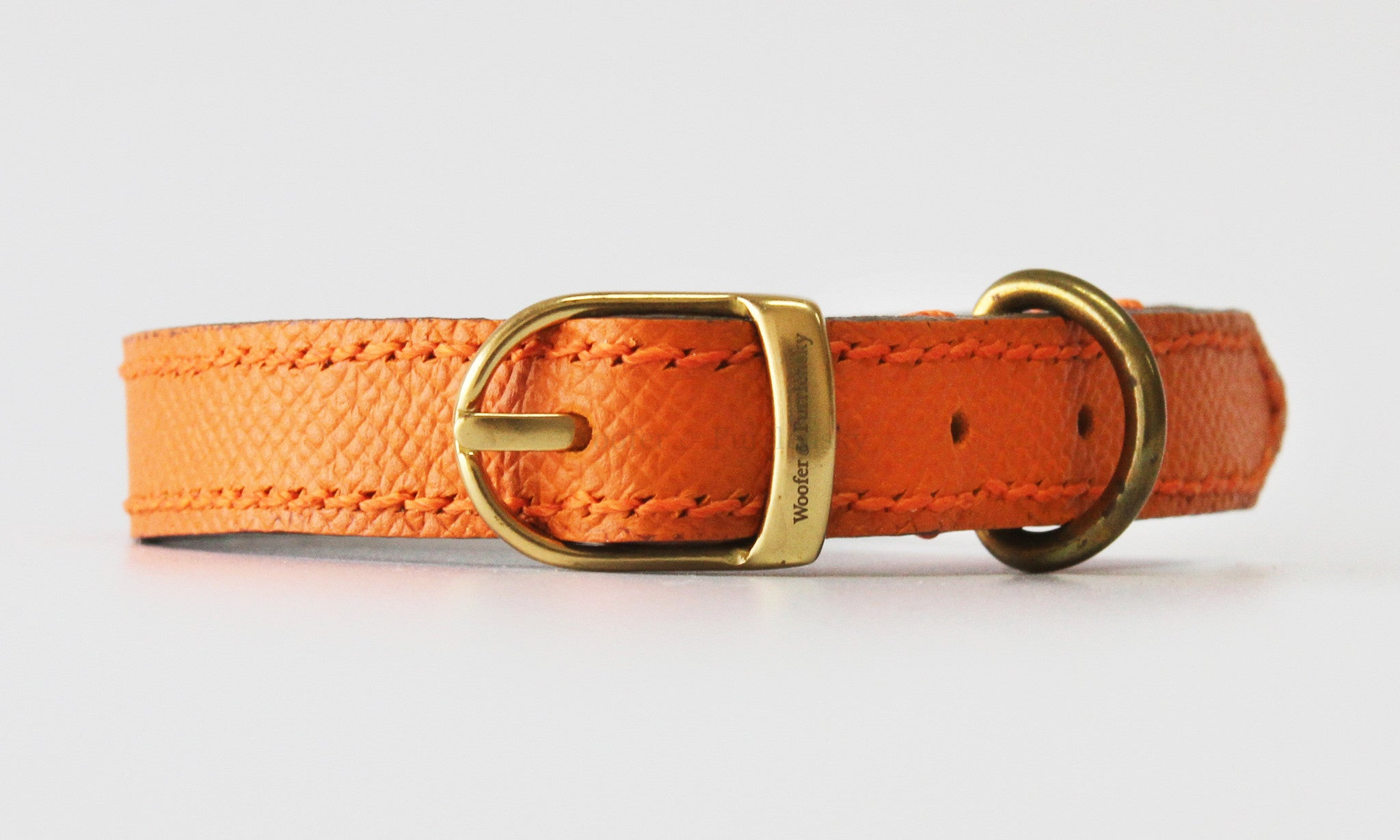 Princeton Leather Collar