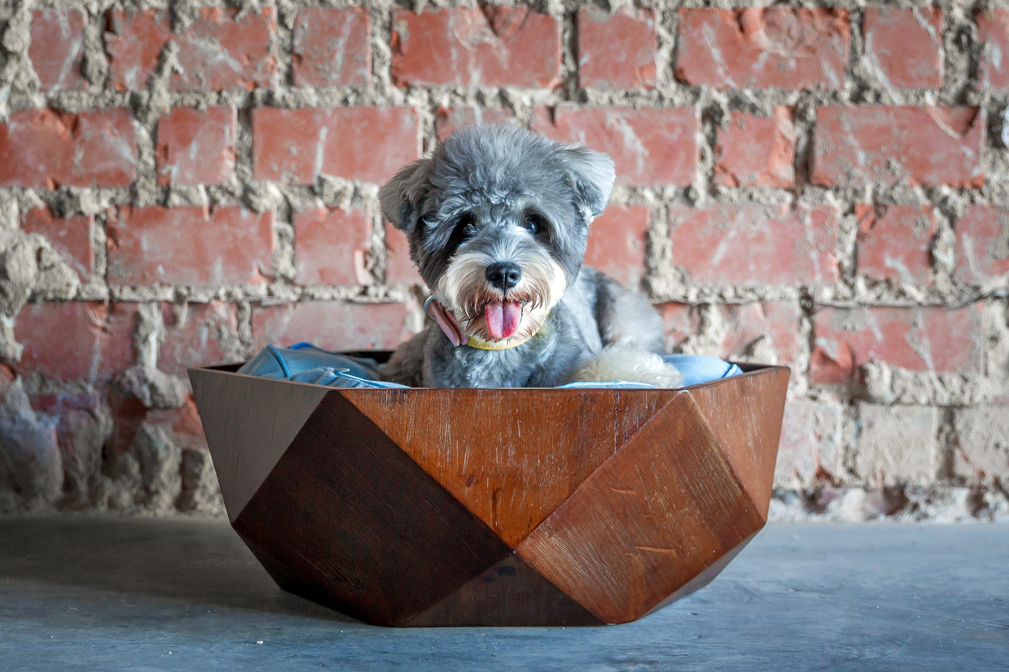 Ruby Wooden Pet Bed