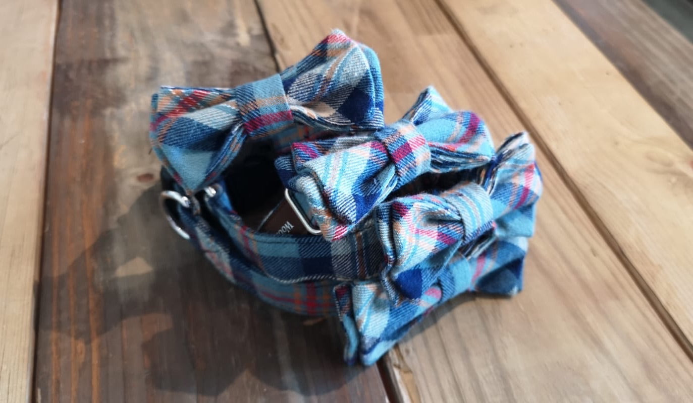 Benedict Fancy Bow Collar - Seabee Plaids