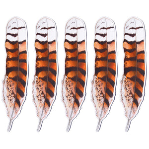 Kookaburra feather Sticker x 5