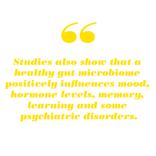 Studies show that a healthy gut microbiome positively influences mood, hormone levels, memory, learning and some psychiatric disorders