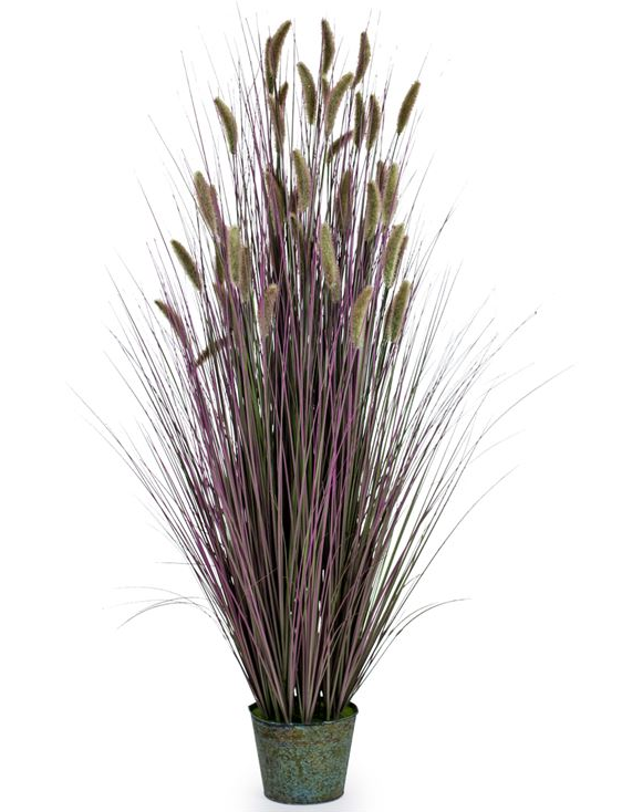 Ornamental Grasses In Galvanised Pot - Large