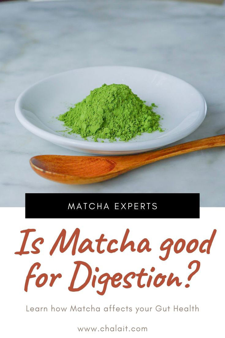 Is Matcha Good For Digestion? Matcha and Gut Health
