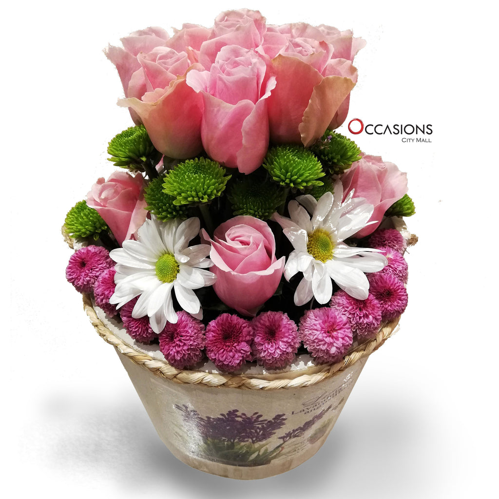 Pink Flowers in White Wood Box Flowerssend_delivery_Amman_Jordan