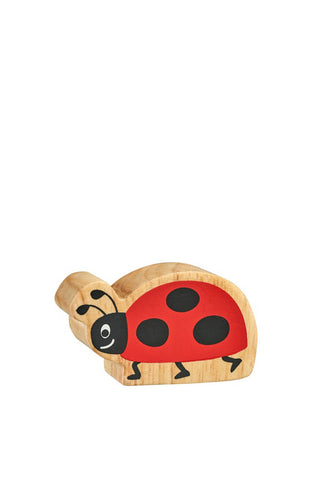 Natural Red & Black Ladybird ~ Lanka Kade