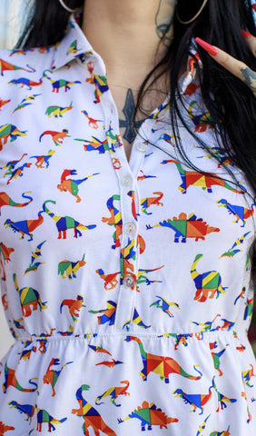 Rainbow Dinosaur Skater Dress With Free Pin ~ Run & Fly